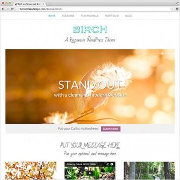 Birch - A Responsive WordPress Theme